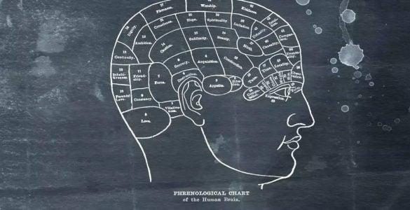 为什么说大脑是人体的指挥中心?