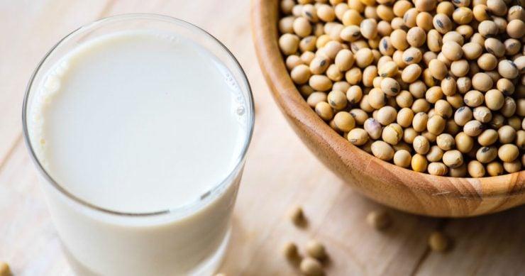 为什么没煮熟的豆浆不能喝?