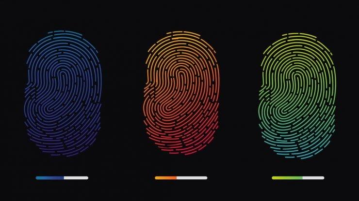 为什么每个人的指纹不一样?