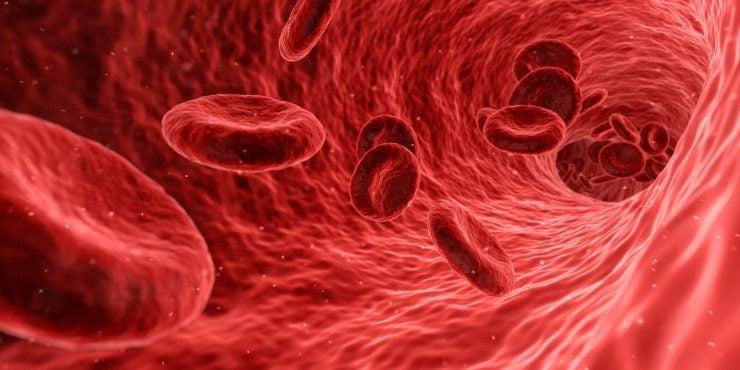 为什么血是红色的?