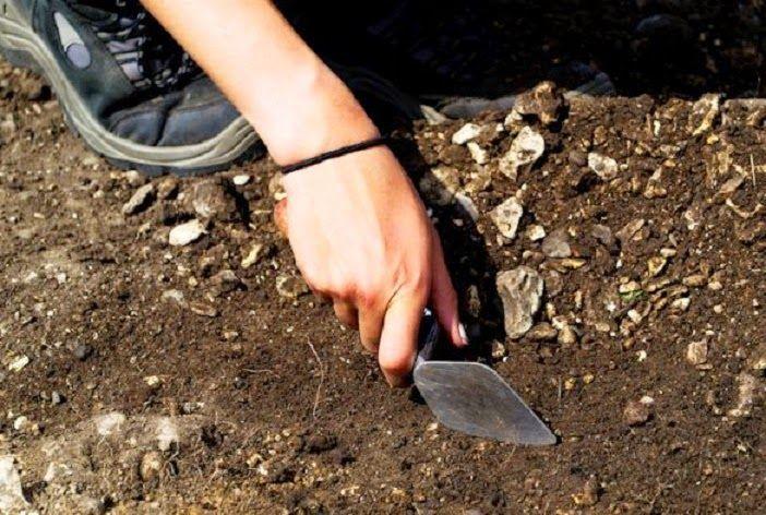 """为什么""""碳钟""""可以测定古文物的年龄?"""