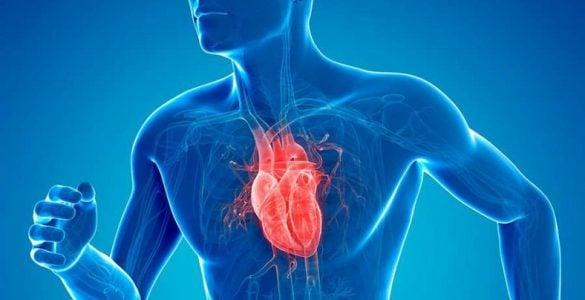 为什么奔跑时心脏会剧烈跳动?