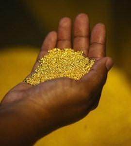 """为什么南非被称为""""黄金之乡""""?"""