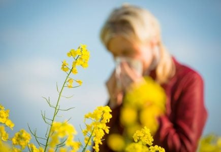 为什么有的人会花粉过敏?