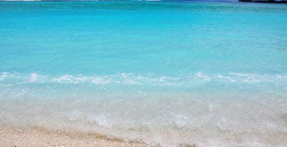 为什么海水又咸又苦?